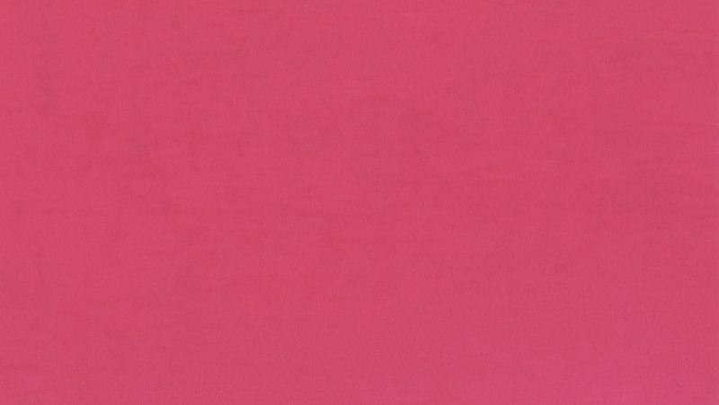 irina rotaru - rosa null raum