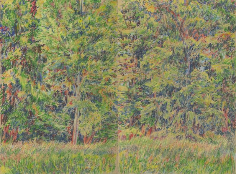 Wald in Steinheim - Forest in Steinheim